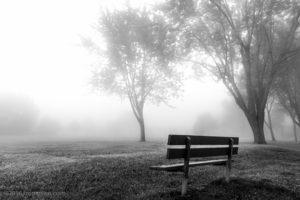 Banc de brouillard